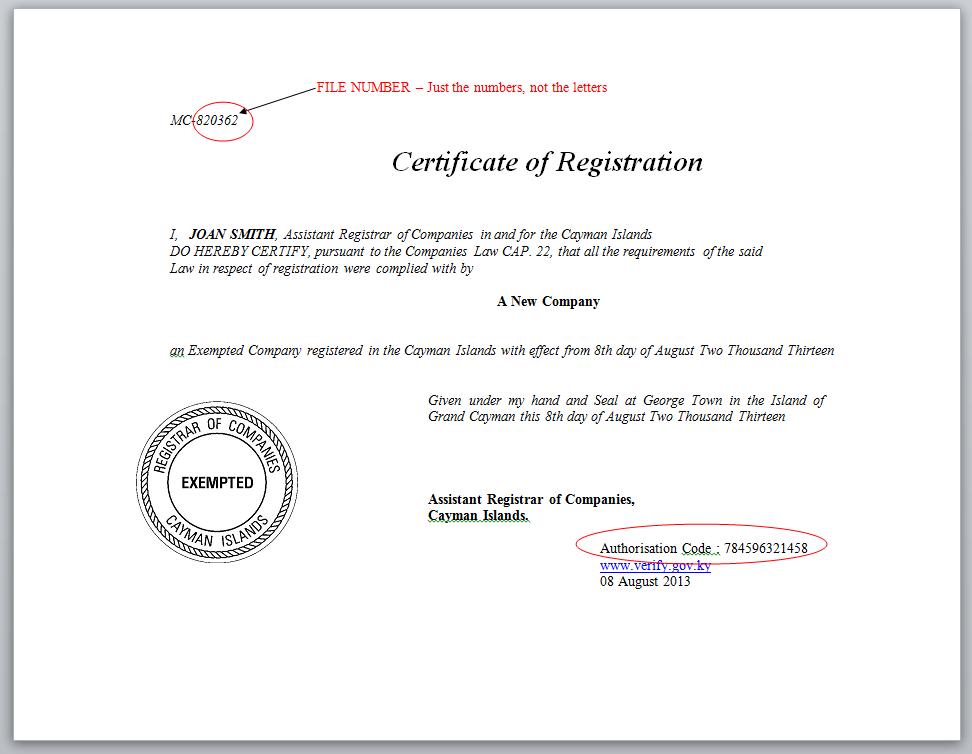 Cayman Island Company Information
